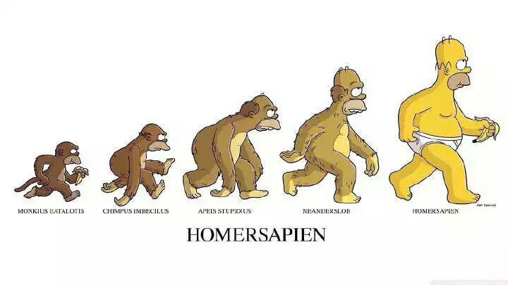 语言能用进化论解释吗?